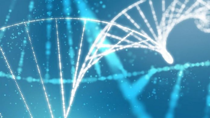 DNA Genetics Concept