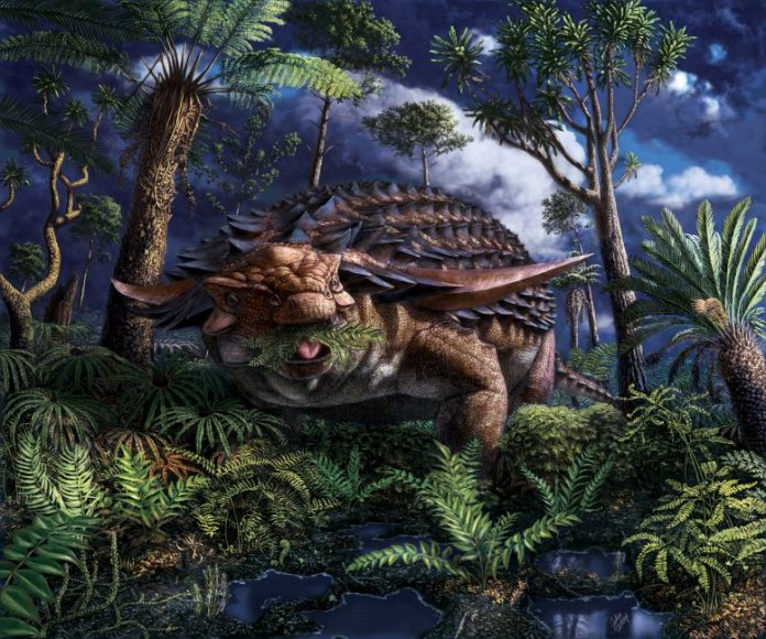 Borealopelta markmitchelli Dinosaur