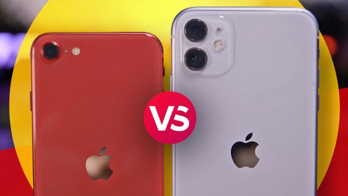 iPhone SE (2020) vs. iPhone 11: We compare cameras to see which is better - Video