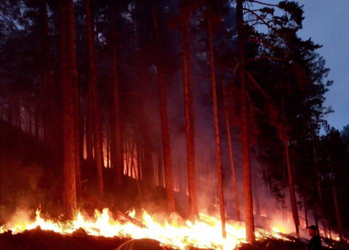 Arctic heat wave driving record temperatures, wildfires