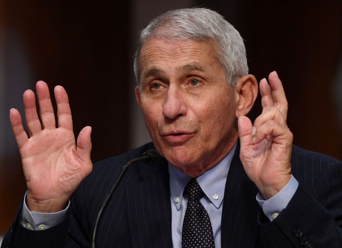 Fauci says U.S. needs to 'get better control' of the coronavirus to reopen without outbreaks