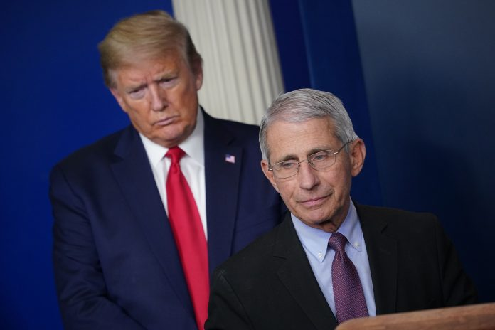 Trump's rift with White House health advisor Fauci widens as cases hit new records