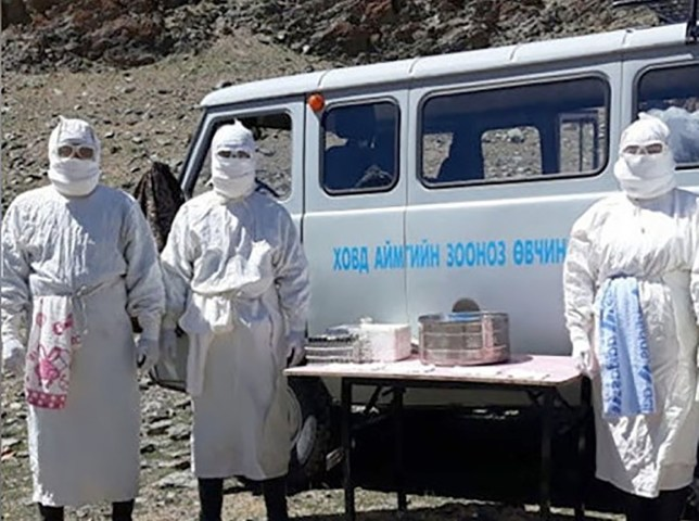 Two cases of Bubonic plague confirmed by Mongolian National Center for Zoonotic Diseases