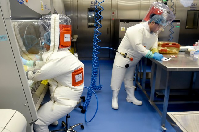 Chinese miners fell ill with 'covid-like virus' in 2012, scientists claim
