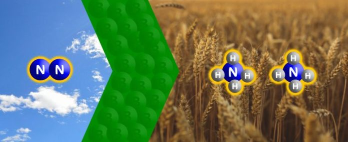 Reducing Nitrogen
