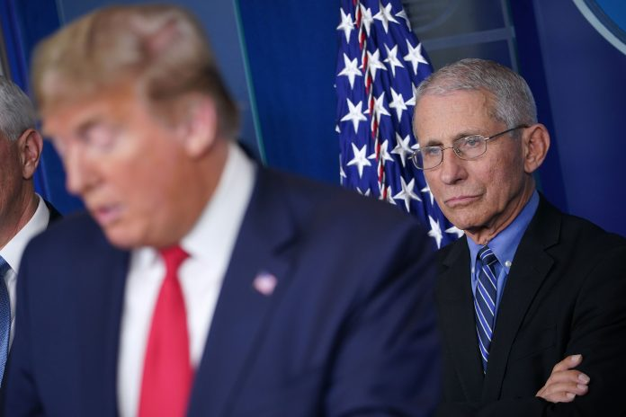 U.S. coronavirus data is 'disturbing,' Dr. Fauci says in disputing Trump