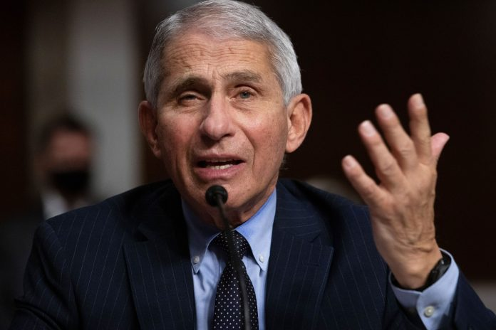 Dr. Anthony Fauci to fight coronavirus 'no matter who's the president'