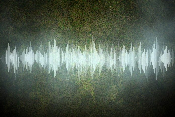 Perfect Fluid Sound