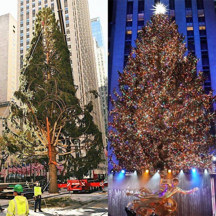Rockefeller Christmas Tree Finally Gets the Glow Up It Deserves - E! Online