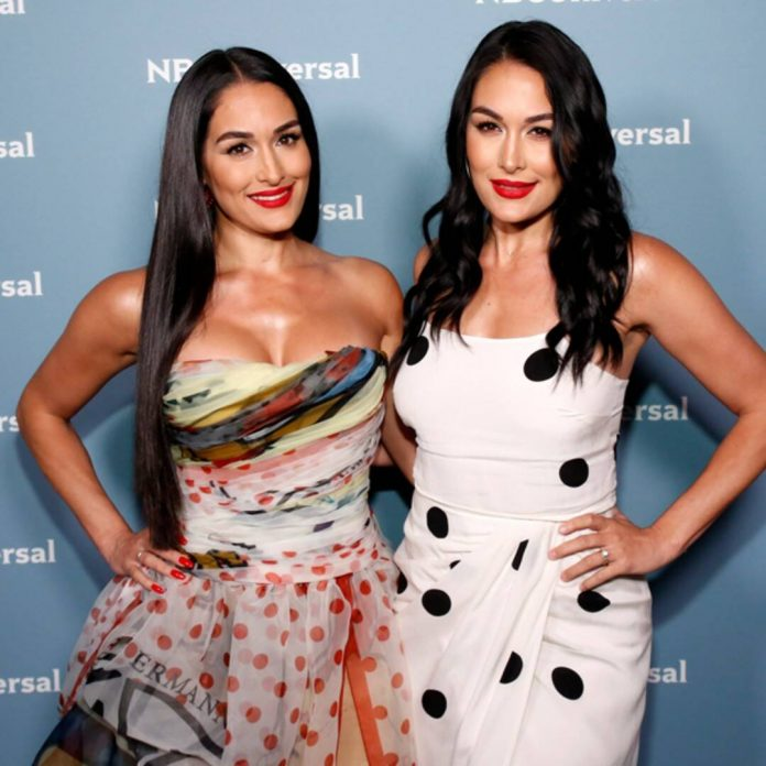Nikki and Brie Bella Just Gave a Major Update About Returning to WWE - E! Online
