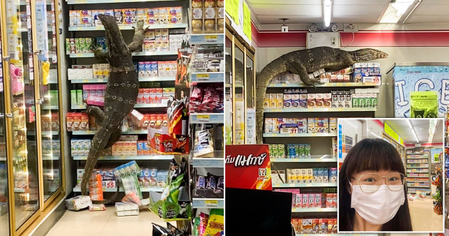 Composite image of the Monitor lizard in a Thai supermarket.