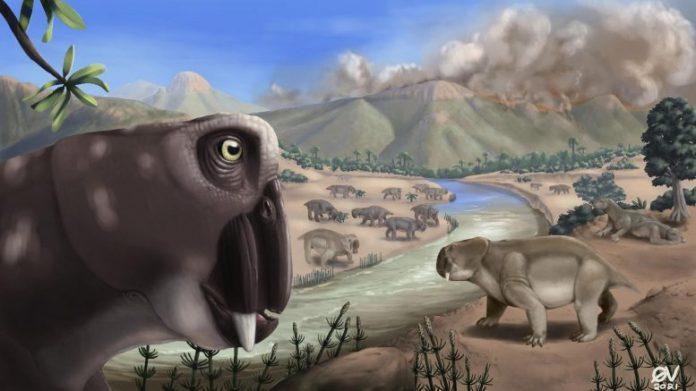 Lystrosaurus Illustration