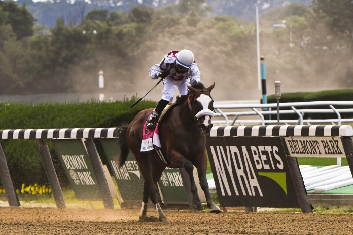 Investing in a racehorse is more attainable