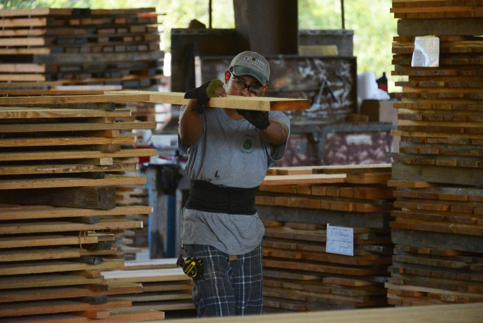 Lumber executive sees further relief in sky-high prices