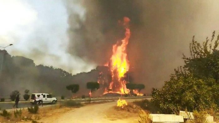 Tourists evacuated as wildfires continue to rage in Turkey, Italy and Greece