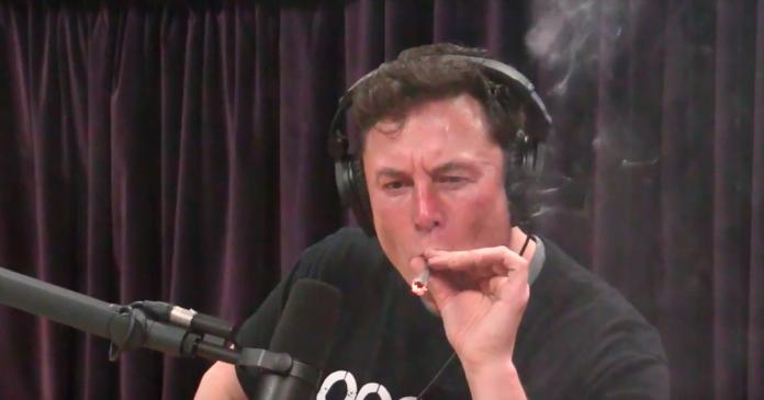 Despite infamous hit, Elon Musk says he has 'no idea how to smoke pot'