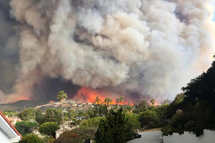 Wildfire Polycyclic Aromatic Hydrocarbons